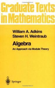 Algebra: An approach via module theory