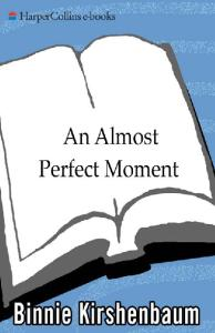 Almost Perfect Moment, An: A Novel
