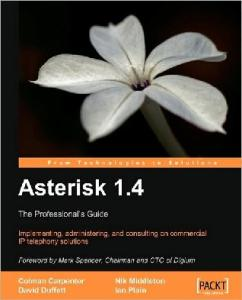 Asterisk 1.4  the Professionals Guide