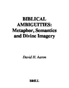 Biblical Ambiguities: Metaphor, Semantics, and Divine Imagery (Brill Reference Library  of Judaism)