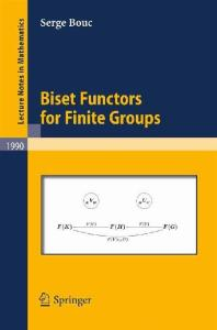 Biset Functors for Finite Groups (Lecture Notes in Mathematics)