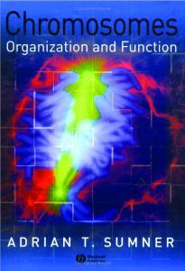 Chromosomes: Organization and Function