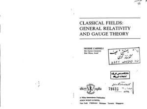 Classical Fields: General Gravity and Gauge Theory