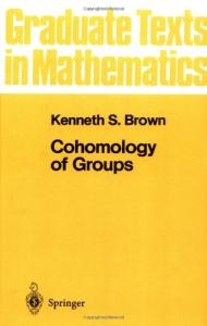 Cohomology of Groups (Graduate Texts in Mathematics 87)