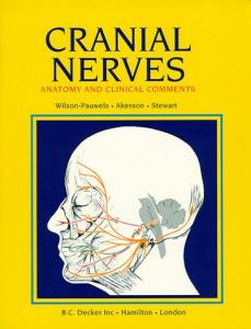 Cranial Nerves: Anatomy and Clinical Comments