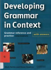 Developing Grammar in Context Intermediate with Answers : Grammar Reference and Practice