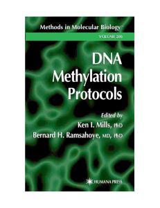 DNA Methylation Protocols (Methods in Molecular Biology Vol 200)