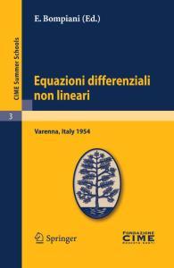 Equazioni differenziali non lineari (C.I.M.E. Summer Schools, 3)