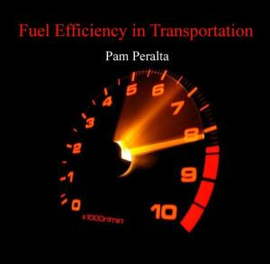 Fuel Efficiency in Transportation