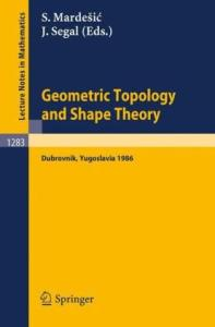 Geometric Topology and Shape Theory