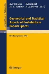 Geometrical and Statistical Aspects of Probability in Banach Spaces