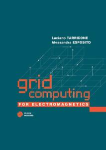 Grid Computing For Electromagnetics