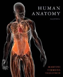 Human Anatomy, 7th Edition
