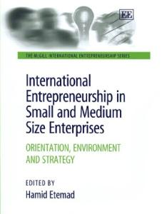 International Entrepreneurship In Small And Medium Size Enterprises: Orientation, Environment And Strategy (The Mcgill International Entrepreneurship Series)
