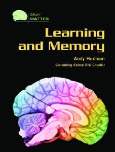 Learning And Memory (Gray Matter)