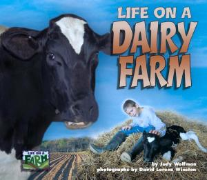 Life on a Dairy Farm (Life on a Farm)