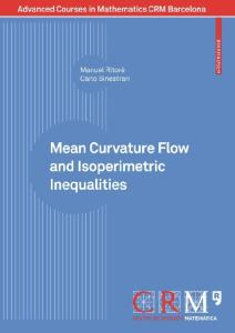 Mean Curvature Flow and Isoperimetric Inequalities