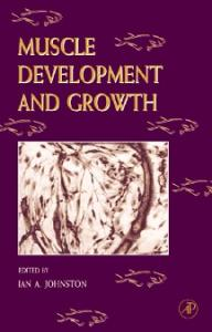 Muscle Development and Growth