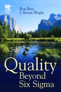 Quality Beyond Six Sigma, First Edition