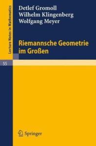 Riemannsche Geometrie im Grossen