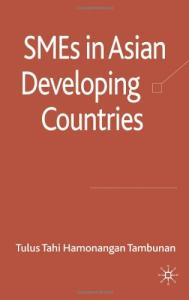SMEs in Asian Developing Countries