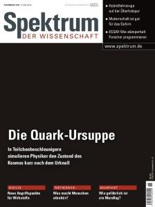 Spektrum der Wissenschaft November 2006  issue 11