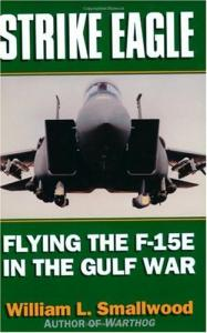 Strike Eagle: Flying the F-15E in the Gulf War