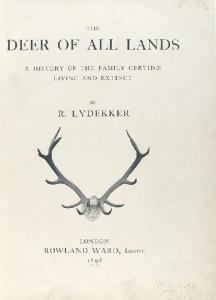 The deer of all lands