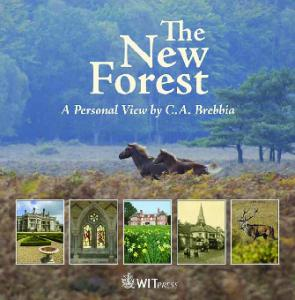 The New Forest--A Personal View by C. A. Brebbia