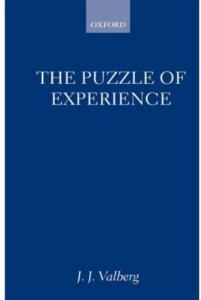 The puzzle of experience
