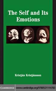 The Self and Its Emotions (Studies in Emotion and Social Interaction)