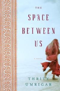 The Space Between Us: A Novel