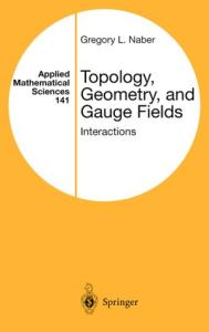Topology, Geometry, and Gauge Fields: Interactions (Applied Mathematical Sciences)
