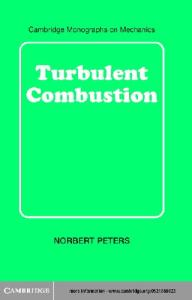 Turbulent Combustion