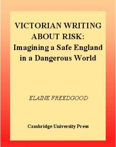 Victorian Writing about Risk: Imagining a Safe England in a Dangerous World (Cambridge Studies in Nineteenth-Century Literature and Culture)